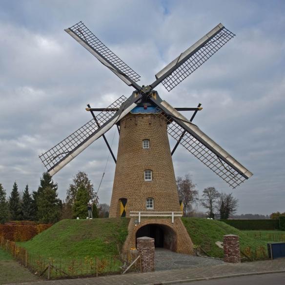 Ospelse-molen-Korenbloem (1)