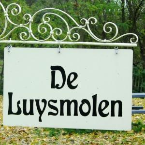 17 TIC molens Voorste Luysmolen uithangbord -001